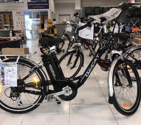 Vélo électrique Neuf Flying Cat Style